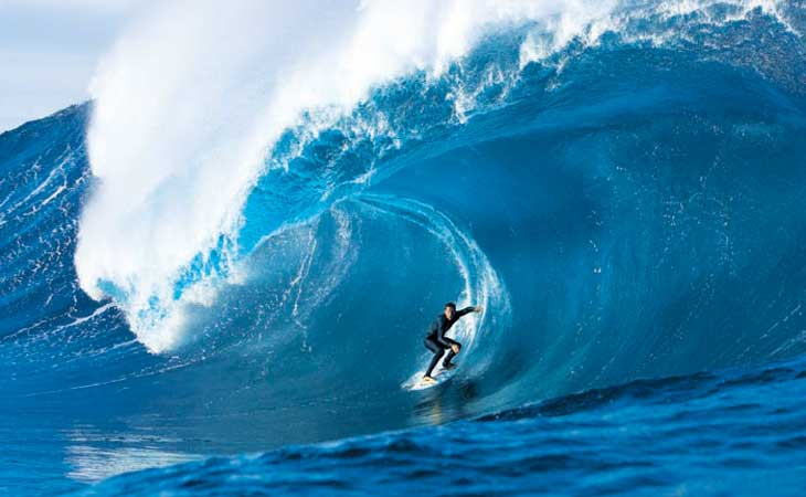 The Amazing Aussie Adventure: Surfing Dude